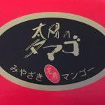 ふるさと納税のお礼品で太陽のタマゴを初めて食べた【宮崎県小林市】